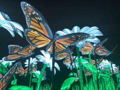 Les Papillons monarques